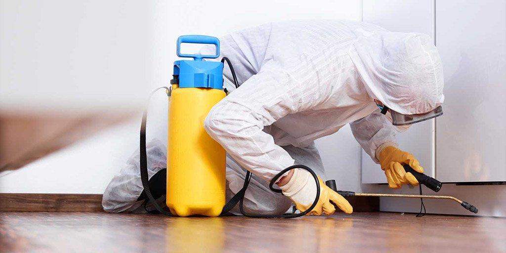 как очистить квартиру после покойника